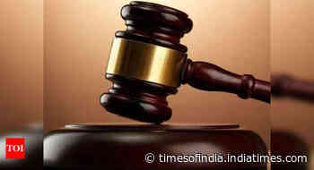 Celebrities should be careful in using terms that may be misinterpreted: HC - Times of India