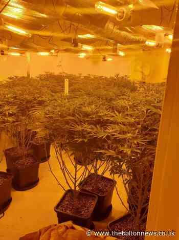 Cannabis farm found after dawn raid on Mount Pleasant, Darcy Lever