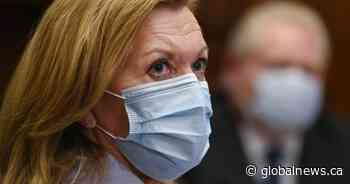 New Ontario procurement system stalled restocking of PPE ahead of pandemic: health minister