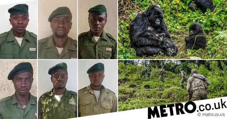 Six murdered wildlife rangers remembered by Prince William 'did not die in vain'