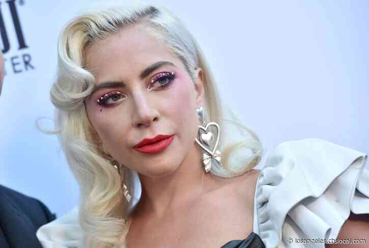Search For Shooter Continues After Lady Gaga's Dogs Are Recovered Safely