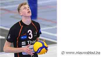 """Wout D'Heer: """"Fans Europees volleybal schenken'' (Aalst) - Het Nieuwsblad"""