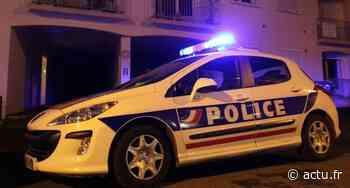 Bussy-Saint-Georges : un voleur interpellé en flagrant délit - actu.fr