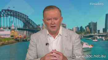 Albanese: 'Australians are looking for common decency to shine through'