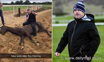 Gordon Elliot under investigation after image of him sat on top of a dead horse surfaces