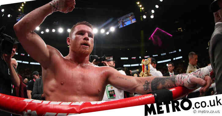 Canelo Alvarez stops Avni Yildirim in third round after one-sided beatdown to set up Billy Joe Saunders clash