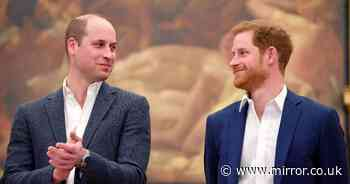 William 'in dark' over Oprah interview and hasn't spoken to Harry 'in some time'