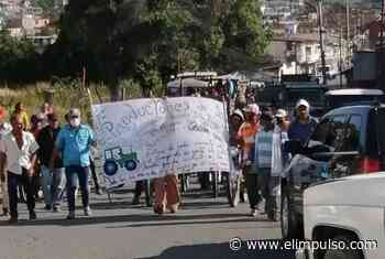 Productores de Sanare protestan por escasez de combustible #12Feb - El Impulso