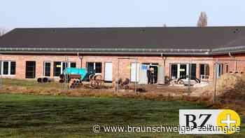Samtgemeinde: Wie sich der Schulstandort Rühen entwickeln soll