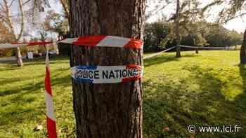 """Boussy-Saint-Antoine, petite ville """"calme"""" rattrapée par la guerre des bandes - LCI"""