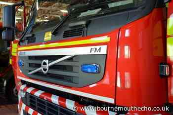 Redhill and Westbourne firefighters extinguish chimney fire