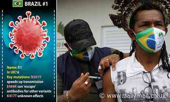 Brazilian Covid hits the UK: Strain is found but scientists say vaccines WILL prevent serious cases
