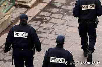 Osny : deux adolescents enlèvent un chien et réclament une rançon - Le Parisien