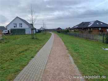 Harsefelds CDU-Fraktion setzt auf blühende Landschaften - Harsefeld - Tageblatt-online