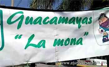 Las guacamayas de Don José afuera del estadio de León   El Universal - El Universal