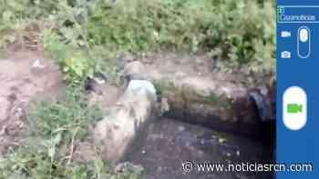 El Cazanoticias: plaga de zancudos en Villavieja, Huila - Noticias RCN