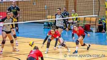 Wieder nix! Stralsunder Wildcats verlieren emotionsgeladenes Spiel gegen Emlichheim - Sportbuzzer