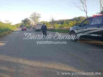 Sospechoso incendio de un auto en el monte: ven huir a una pareja - El Diario de Yucatán