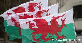 Wish someone a Happy St David's Day in Welsh