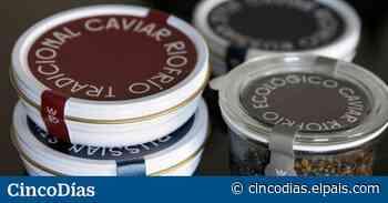 Riofrío recupera el caviar más caro del mundo - Cinco Días