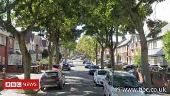 Bordesley Green: Group of gunmen open fire at house