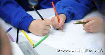 School shuts after one suspected coronavirus case