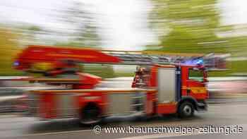Täter zünden Altpapiercontainer vor BBS Fredenberg an