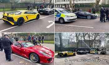 Armed police swoop on supercar boy racers as they staged a PHOTOSHOOT outside Buckingham Palace