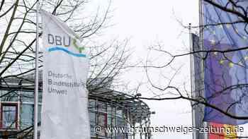Deutsche Bundesstiftung Umwelt fördert auch grüne Start-Ups