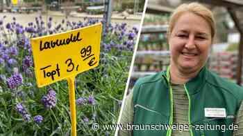 Gartenmärkte offen: Für Blumen ins nächste Bundesland fahren