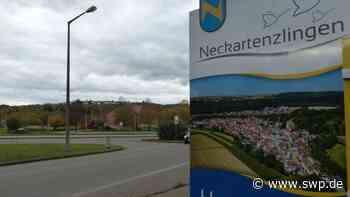 Neckartenzlingen Jubiläumsfeier: 950-jähriges Bestehen: Ein ganzer Ort in Feierlaune - SWP