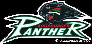 Augsburger Panther verpflichten McClure als Ersatz für verletzten Lambacher
