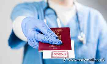 EU's vaccine passports offer a hope for holidays
