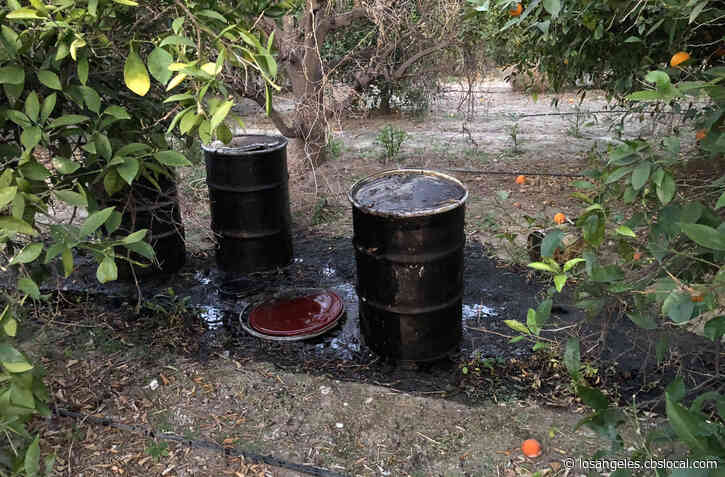 Trio Of 55-Gallon Drums Found Leaking Motor Oil In Redlands Citrus Grove