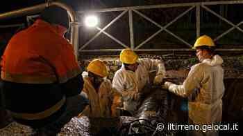 Si rompe un tubo dell'acquedotto: Collesalvetti, Stagno e alcuni quartieri di Livorno senz'acqua - Il Tirreno