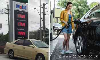 Sydney motorists are warned to fill up NOW as petrol prices prepare to soar to pre-Covid levels