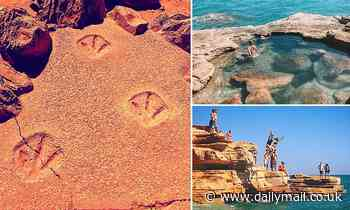 Place in Australia where you can see fossilised DINOSAUR footprints and how to get there