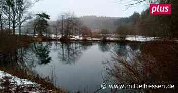 In Gladenbach auf den Spuren der Nachhaltigkeit wandern - Mittelhessen