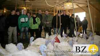 Ärger in Müden nach Bauantrag für Putenmast