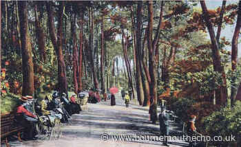 Which part of Bournemouth this picture was taken?