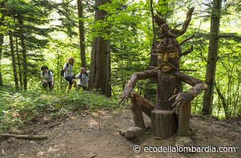 Trekking nella foresta dei Corni di Canzo, 14 marzo 2021 - Eco della Lombardia