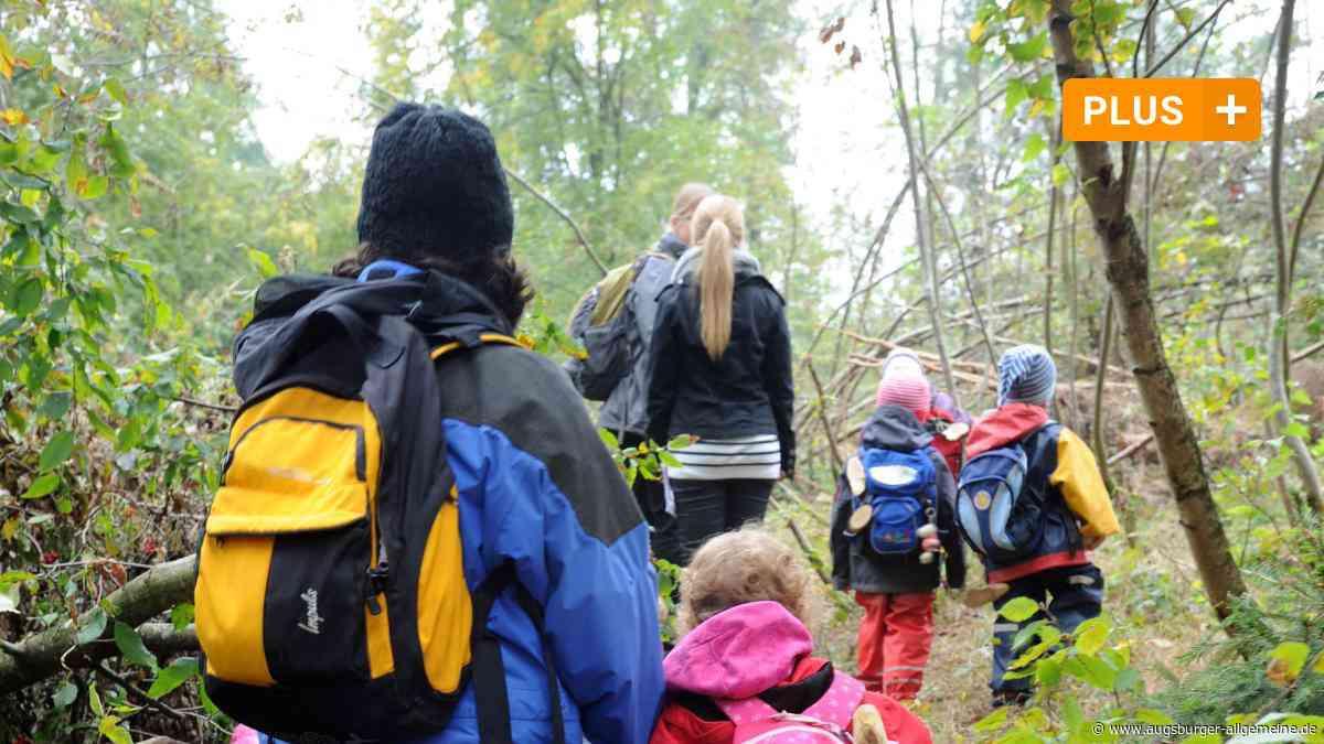 In Denklingen ist ein Waldkindergarten geplant