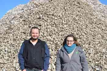 La Rochelle : Ovive, l'entreprise qui donne une seconde vie aux bouchons en liège et aux coquilles d'huîtres - Actu La Rochelle