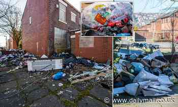 Fly-tippers turn estate into rubbish dump with skips overflowing
