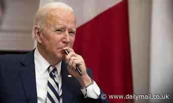 Democrats are pushing Joe Biden to fund a recurring checks program in his coronavirus recovery plan