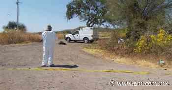 Abasolo: Hombre es asesinado a un costado de carretera a Boquillas - Periódico AM