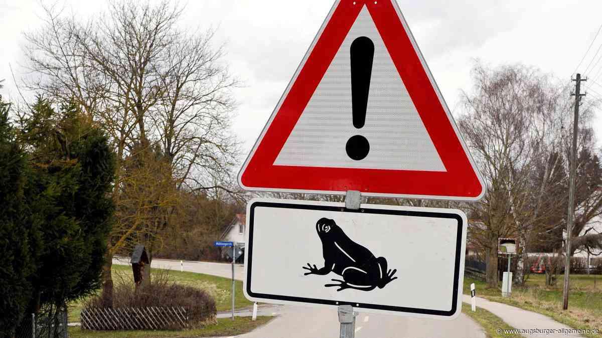 Krötenwanderung: Wo im Landkreis Landsberg Straßen gesperrt sind