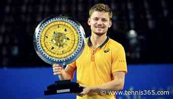 David Goffin ends long wait for an ATP title with a win in Montpellier - Tennis365