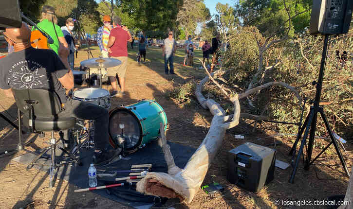 Caught On Video: Large Tree Branch Falls On Top Of Band Playing At Mar Vista Park