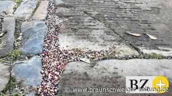Die Spur der Perlen im Kunstverein Braunschweig